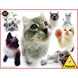 Piatnik Puzzle Kočky Hanadeka 100 dílků
