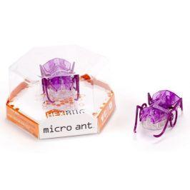 Hexbug Micro Ant fialová