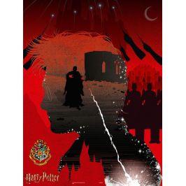 Winning Moves Harry Potter Skrytý viteál puzzle 1000 dílků
