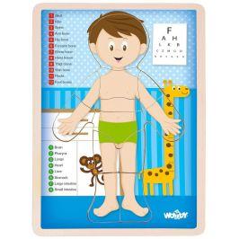 Woody Oboustranné puzzle Lidské tělo chlapec anglicky