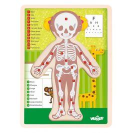 Woody Puzzle Lidské tělo Holka EN