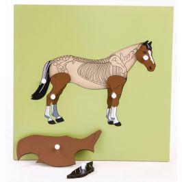 Montessori pomůcky Puzzle s kostrou - kůň - zánovní