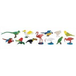 Safari Ltd. Tuba - Exotické ptactvo