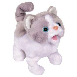 ChiChi Love Kočička - rozbaleno