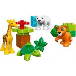 LEGO® DUPLO 10801 Mláďátka