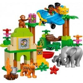 LEGO® DUPLO 10804 Džungle
