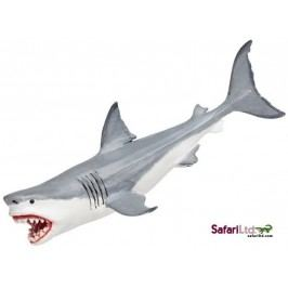 Safari Ltd. Megalodon