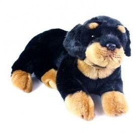 Rappa Rottweiler, ležící