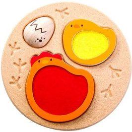 Puzzle - Životní cyklus kuřete