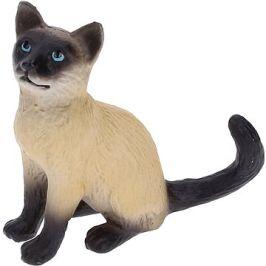 Atlas Kočka