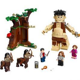 LEGO Harry Potter TM 75967 Zapovězený les: Setkání Drápa a profesorky Umbridgeové