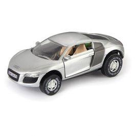 Audi R8, stříbrné