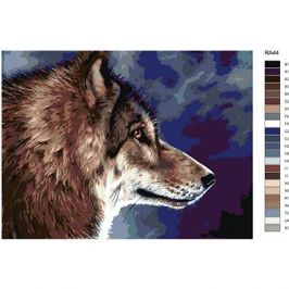 Malování podle čísel - Hlava vlka