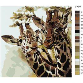 Malování podle čísel - Žirafy