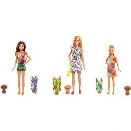 Barbie Dha Sestra s plavkami