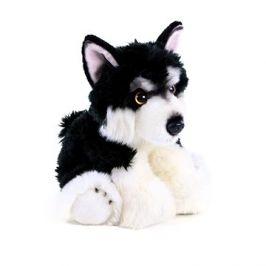 Rappa plyšový pes malamut 28 cm Eco-friendly