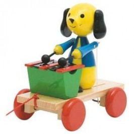 Woody Tahací pes s xylofonem