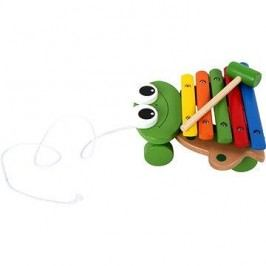 Xylofón žába