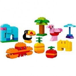 LEGO DUPLO My First 10853 DUPLO Kreativní box pro stavitele