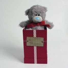 EPline MTY Medvídek v dárkové krabičce