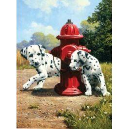 Malování podle čísel - Dalmatini u červeného hydrantu
