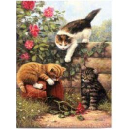 Malování podle čísel - Koťata