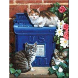 Malování podle čísel - Poštovní schránka