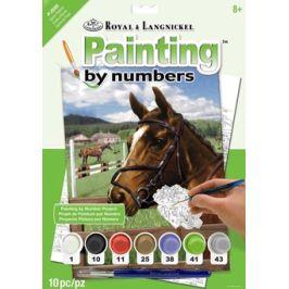 Malování podle čísel- Kůň v ohradě