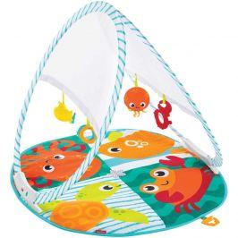 FISHER PRICE Hrací dečka do tašky