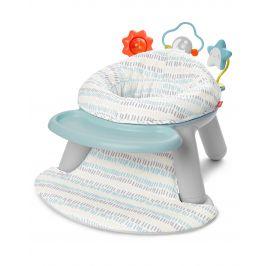SKIP HOP Aktivní centrum/židle 2v1 Silver Lining do 11 kg